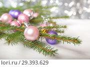 Купить «Christmas decorations, decorated spruce branch», фото № 29393629, снято 6 ноября 2018 г. (c) Юлия Бабкина / Фотобанк Лори