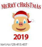 Купить «Symbol of 2019 yellow earth pig, new year card», иллюстрация № 29413437 (c) Мастепанов Павел / Фотобанк Лори