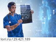 Купить «Doctor looking at x-ray image in telehealth concept», фото № 29421189, снято 26 марта 2019 г. (c) Elnur / Фотобанк Лори