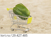 Купить «Green sweet pepper paprika in shopping trolley standingon the sand. Green bell pepper on cart for sell. Vegetable loaded in a miniature shopping cart on sand background. Healthy diet food. Close up.», фото № 29427485, снято 21 марта 2019 г. (c) Marina Sharova / Фотобанк Лори