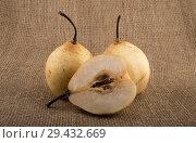 Купить «Три жёлтые груши», фото № 29432669, снято 2 сентября 2018 г. (c) Литвяк Игорь / Фотобанк Лори
