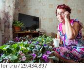 Купить «Пожилая женщина выращивает фиалки в своей комнате квартиры», фото № 29434897, снято 24 июня 2018 г. (c) Вячеслав Палес / Фотобанк Лори