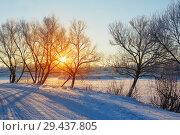 Купить «winter morning with snow and frost», фото № 29437805, снято 24 января 2018 г. (c) Майя Крученкова / Фотобанк Лори