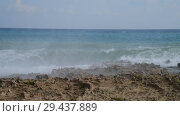 Купить «Waves of Mediterranean Sea near the rocky shore», видеоролик № 29437889, снято 4 ноября 2018 г. (c) Володина Ольга / Фотобанк Лори