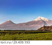 View of mount Ararat from Armenia and the monastery of Khor Virap with vineyards in the foreground (2018 год). Стоковое фото, фотограф Наталья Волкова / Фотобанк Лори