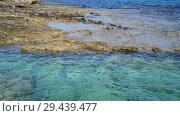 Купить «clear water of Mediterranean with stone and sandy bottom», видеоролик № 29439477, снято 1 ноября 2018 г. (c) Володина Ольга / Фотобанк Лори