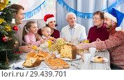 Купить «Laughing family members making conversation», фото № 29439701, снято 23 января 2019 г. (c) Яков Филимонов / Фотобанк Лори