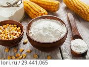 Купить «Starch and corn cob», фото № 29441065, снято 15 марта 2018 г. (c) Надежда Мишкова / Фотобанк Лори