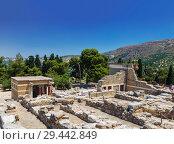 Купить «Top view of ruins of Knossos Palace in Crete, Heraklion, Greece», фото № 29442849, снято 5 июня 2017 г. (c) Наталья Волкова / Фотобанк Лори