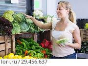 Купить «glad young woman shopping fresh cabbage», фото № 29456637, снято 14 декабря 2018 г. (c) Яков Филимонов / Фотобанк Лори