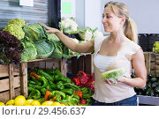 Купить «glad young woman shopping fresh cabbage», фото № 29456637, снято 20 июня 2019 г. (c) Яков Филимонов / Фотобанк Лори