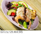 Купить «Quail Tabaka (grilled) with sesame», фото № 29464945, снято 16 января 2019 г. (c) Яков Филимонов / Фотобанк Лори