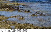 Купить «clear water of Mediterranean with stone», видеоролик № 29465565, снято 1 ноября 2018 г. (c) Володина Ольга / Фотобанк Лори