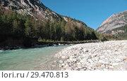 Купить «Mysterious mountainous forest with trees leaning over fast creek stream», видеоролик № 29470813, снято 24 апреля 2019 г. (c) Константин Шишкин / Фотобанк Лори