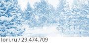 Купить «Winter landscape», фото № 29474709, снято 20 ноября 2018 г. (c) Икан Леонид / Фотобанк Лори
