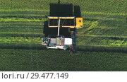 Купить «The combine harvester unloads wheat into the body of the lorry», видеоролик № 29477149, снято 16 сентября 2018 г. (c) Андрей Радченко / Фотобанк Лори