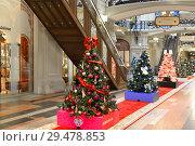 Купить «Christmas and New Year. Lovely two-meter Christmas trees decorated by partners of GUM. Москва», фото № 29478853, снято 25 ноября 2018 г. (c) Валерия Попова / Фотобанк Лори