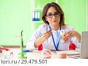 Купить «Woman dentist working on teeth implant», фото № 29479501, снято 11 июня 2018 г. (c) Elnur / Фотобанк Лори