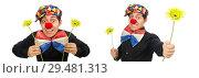 Купить «Funny clown with flowers isolated on white», фото № 29481313, снято 22 января 2015 г. (c) Elnur / Фотобанк Лори
