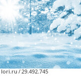 Купить «Winter bright background. Christmas landscape with snowdrifts and pine branches in the frost.», фото № 29492745, снято 25 ноября 2018 г. (c) Икан Леонид / Фотобанк Лори