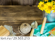 Купить «Gardening. Planting and replanting plants. A bouquet of yellow bright garden flowers in a steel bucket and garden tools on a wooden background in rustic style with a copy space», фото № 29503213, снято 9 сентября 2018 г. (c) Светлана Евграфова / Фотобанк Лори