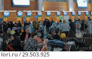 Купить «Registration desks and lounge with people in Terminal D of Sheremetyevo Airport.», видеоролик № 29503925, снято 22 декабря 2017 г. (c) Данил Руденко / Фотобанк Лори