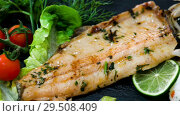 Купить «deliciously fried trout fillet with rice and greens on black plate», видеоролик № 29508409, снято 17 сентября 2018 г. (c) Яков Филимонов / Фотобанк Лори