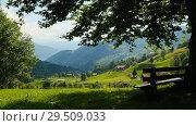 Купить «Bench under a tree on a hill», видеоролик № 29509033, снято 20 февраля 2020 г. (c) Антон Гвоздиков / Фотобанк Лори