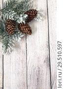 Купить «С Новым годом и Рождеством. Еловые ветки и шишки. Праздничная открытка», фото № 29510597, снято 2 декабря 2018 г. (c) Наталья Осипова / Фотобанк Лори