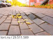 Купить «Destruction of paving slabs.», фото № 29511589, снято 3 октября 2018 г. (c) Акиньшин Владимир / Фотобанк Лори