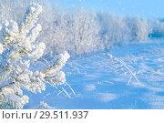 Купить «Winter landscape», фото № 29511937, снято 1 декабря 2018 г. (c) Икан Леонид / Фотобанк Лори