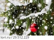 Купить «red christmas ball on fir tree branch with snow», фото № 29512229, снято 11 ноября 2016 г. (c) Syda Productions / Фотобанк Лори