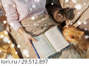 Купить «red and tabby and owner reading book at home», фото № 29512897, снято 15 ноября 2017 г. (c) Syda Productions / Фотобанк Лори