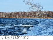 Купить «Небольшие льдины на озере Увильды в ноябре холодным морозным днем. Южный Урал», фото № 29514513, снято 13 ноября 2018 г. (c) Овчинникова Ирина / Фотобанк Лори