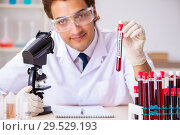 Купить «Young handsome lab assistant testing blood samples in hospital», фото № 29529193, снято 31 августа 2018 г. (c) Elnur / Фотобанк Лори