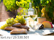 Купить «Tasty cheese, wine, grapes and bread on table in vineyards», фото № 29530501, снято 12 декабря 2018 г. (c) Яков Филимонов / Фотобанк Лори