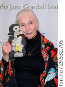 Купить «'Up Close with Dr. Jane Goodall and Friends' event at the Beverly Hilton Hotel in Beverly Hills, California Featuring: Dr. Jane Goodall Where: Los Angeles...», фото № 29532705, снято 8 апреля 2018 г. (c) age Fotostock / Фотобанк Лори