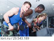 Купить «Young guys and girls with dumbbells in gym», фото № 29543189, снято 16 апреля 2018 г. (c) Яков Филимонов / Фотобанк Лори
