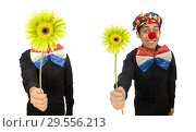 Купить «Funny clown with flowers isolated on white», фото № 29556213, снято 22 января 2015 г. (c) Elnur / Фотобанк Лори