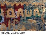 Купить «Молодежная графика для Даши на бетонной стене. Город Заводоуковск», эксклюзивное фото № 29560289, снято 25 ноября 2018 г. (c) Анатолий Матвейчук / Фотобанк Лори