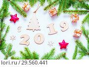Купить «New Year 2019 background with 2019 figures,Christmas toys, fir branches. Flat lay, top view, New Year 2019 design», фото № 29560441, снято 30 ноября 2016 г. (c) Зезелина Марина / Фотобанк Лори