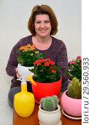 Купить «A housewife caring for plants in pots», фото № 29560933, снято 20 ноября 2017 г. (c) Володина Ольга / Фотобанк Лори