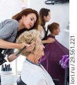 Купить «Stylist doing hairdress for senior lady», фото № 29561221, снято 26 июня 2018 г. (c) Яков Филимонов / Фотобанк Лори