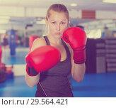 Купить «Portrait of woman boxer», фото № 29564421, снято 21 августа 2017 г. (c) Яков Филимонов / Фотобанк Лори