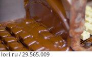 Купить «candies processing by chocolate coating machine», видеоролик № 29565009, снято 10 декабря 2018 г. (c) Syda Productions / Фотобанк Лори