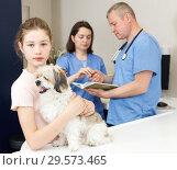 Купить «Upset girl with dog consulting by veterinarian», фото № 29573465, снято 3 мая 2018 г. (c) Яков Филимонов / Фотобанк Лори