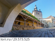 Купить «Sighisoara clock tower from fortress square, Romania», фото № 29573525, снято 16 сентября 2017 г. (c) Яков Филимонов / Фотобанк Лори