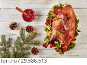 Купить «overhead view of a whole roasted free-range turkey on a white oval plate with greens, pomegranates and tangerines, cranberry sauce and fir tree on a table, view from above, flatlay», фото № 29586513, снято 14 декабря 2018 г. (c) Oksana Zh / Фотобанк Лори
