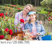 Купить «woman and teen holding a basket and standing in the park of roses.», фото № 29586705, снято 18 апреля 2017 г. (c) Яков Филимонов / Фотобанк Лори