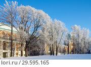 """Купить «Москва, музей-усадьба """"Царицыно"""" морозным зимним днем», фото № 29595165, снято 17 декабря 2018 г. (c) Natalya Sidorova / Фотобанк Лори"""